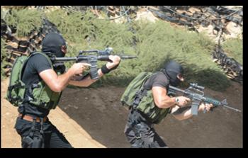 swat2.png